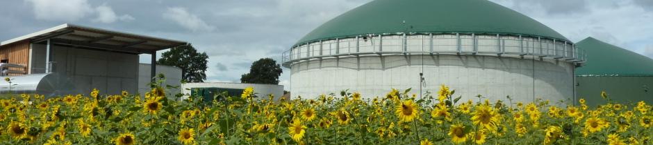 Biomasskraftwerk, Biogasanlage Rendswühren, Peter Krabbe